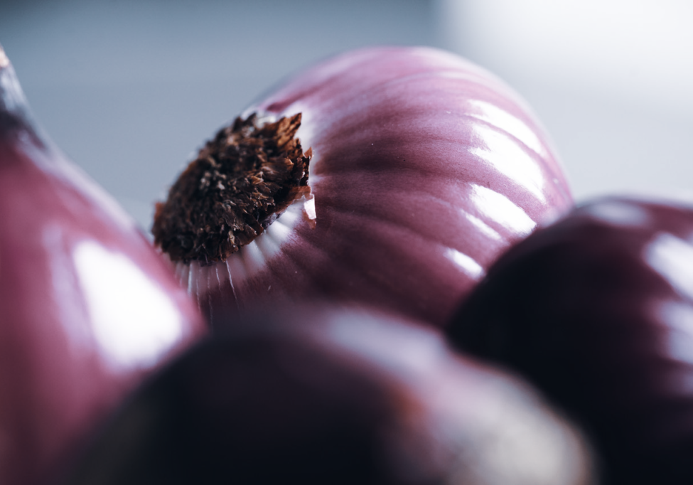 red onions_ blog gut